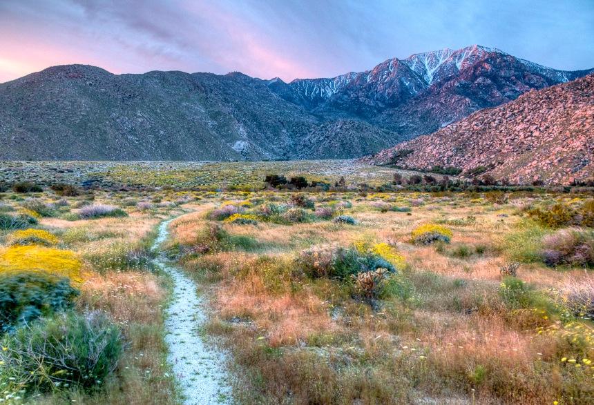 Pacific Crest Trail in California